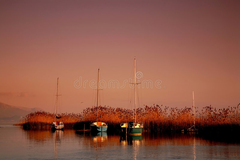 Horizontal photo stock