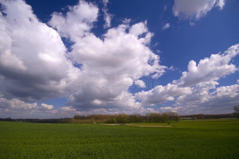 Download Horizontal image stock. Image du ferme, accroissement, pays - 734975