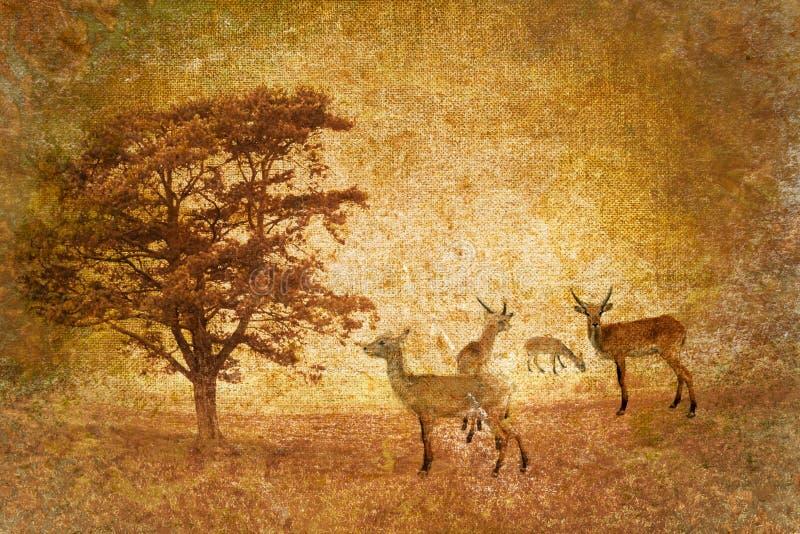 Horizontal abstrait de la savane de cru illustration de vecteur