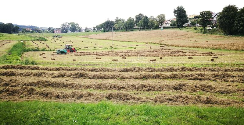 Download Horizontal agricole photo stock. Image du agricole, agriculture - 76089002