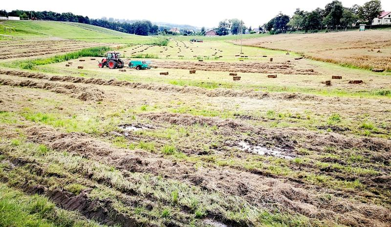 Download Horizontal agricole image stock. Image du poli, campagne - 76089243