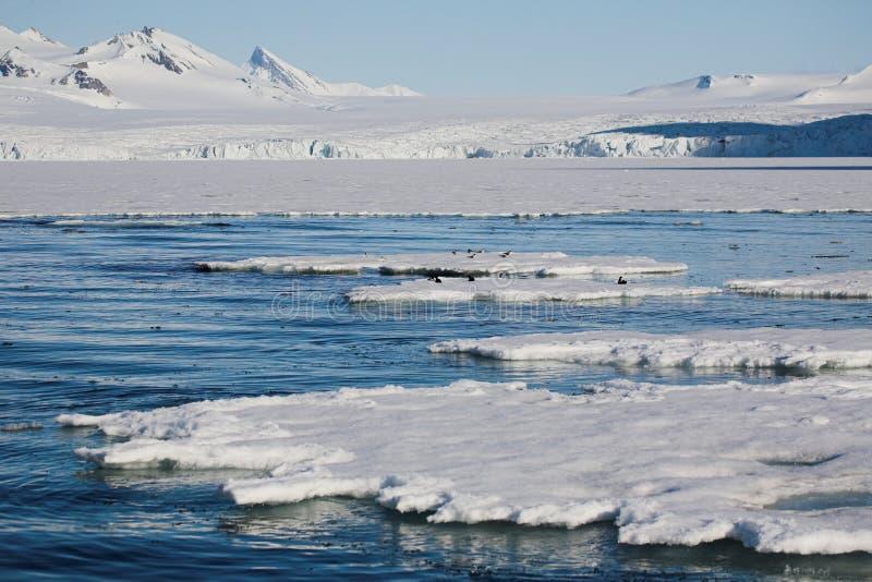 Horizontal arctique de l'hiver - mer, glacier, montagnes photographie stock libre de droits