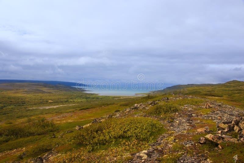 Horizontal arctique de toundra images libres de droits