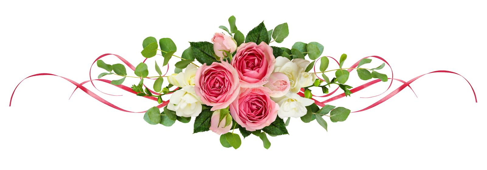 Horizontal arrangement with pink roses, freesia flowers, eucalyptus leaves and sarin ribbons. Isolated on white. Top view. Flat lay vector illustration