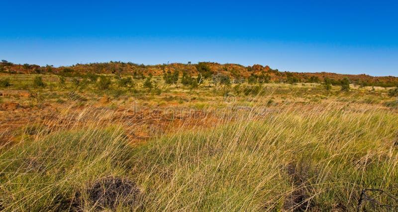 Horizontal australien photo stock