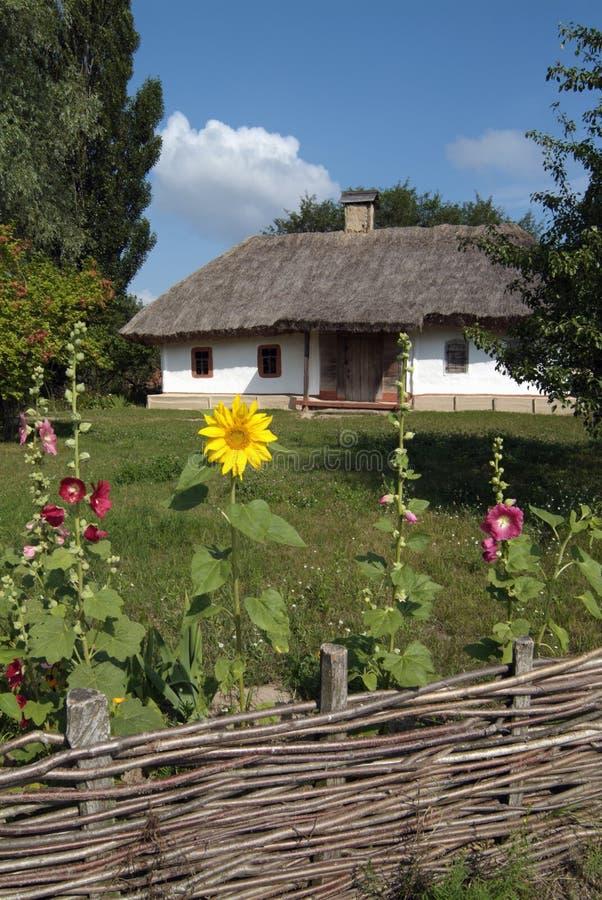 Horizontal avec l'acacia, et vieille maison images libres de droits