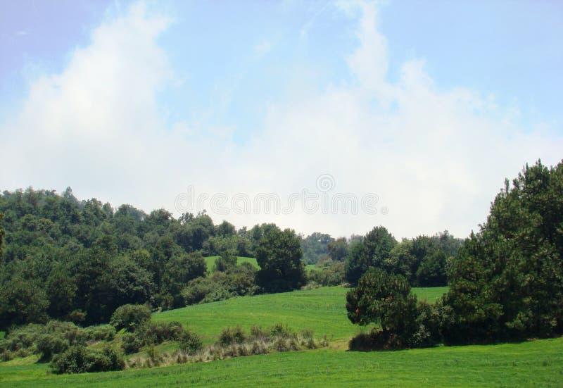 Horizontal avec le ciel bleu photos libres de droits