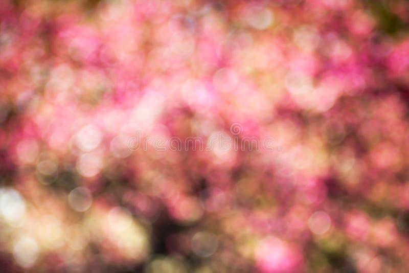 Horizontal background with pink bokeh. Pink bokeh abstract light background whith horizontal orientation royalty free stock photo