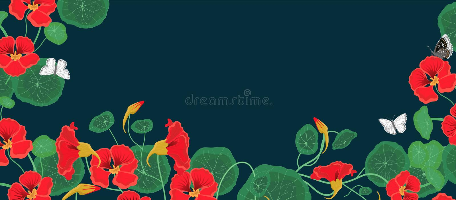 Horizontal banner with nasturtium flowers and butterflies. Vector template royalty free illustration