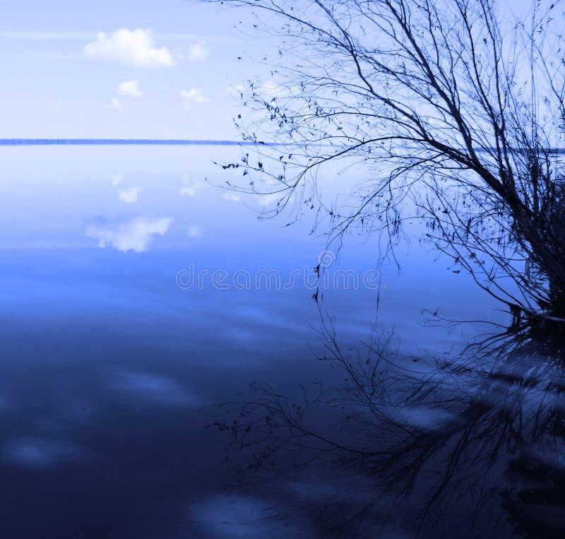 Horizontal bleu avec un arbre isolé images stock