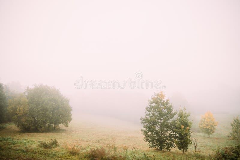 Horizontal brumeux Brouillard de matin au-dessus de Misty Meadow Autumn Nature Of Eastern Europe image stock