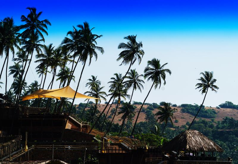 Horizontal classic India travel landscape backdround backdrop. Nobody blank empty space sparse vivid vibrant bright color rich blue sky clear gradient palms royalty free stock photo