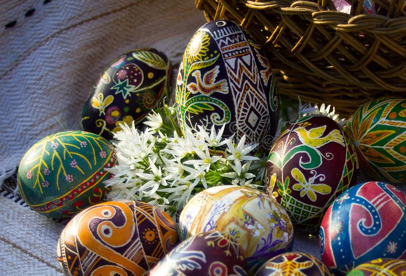 Easter eggs close-up with white flowers. Horizontal close up image of ukrainian painted Easter eggs `pysanky` with flowers in cold tones royalty free stock photo