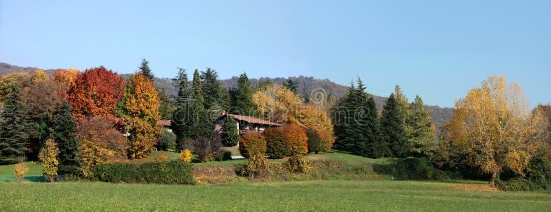 Horizontal coloré d'automne images libres de droits