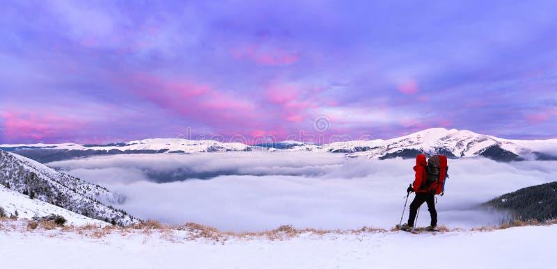 Horizontal coloré de l'hiver photo stock