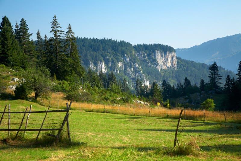 Horizontal d'été de montagne de Rodhope photo libre de droits