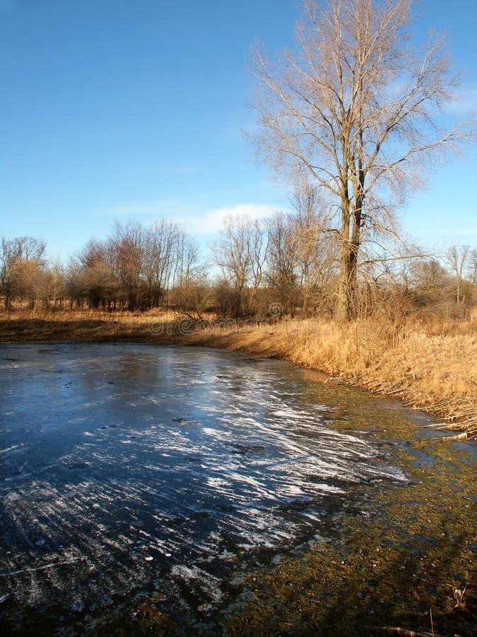 Horizontal d'étang de Midwest photo stock