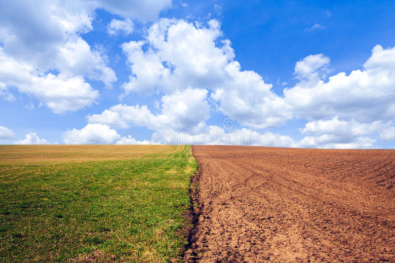 Horizontal d'agriculture photo stock