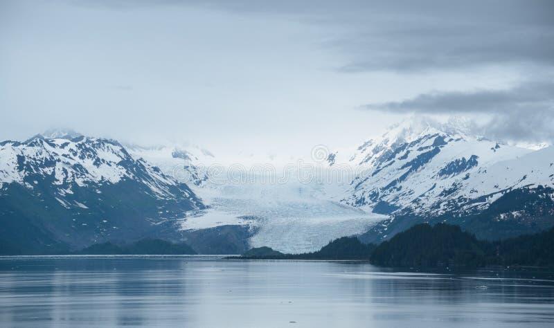 Horizontal d'Alaska brumeux photos libres de droits