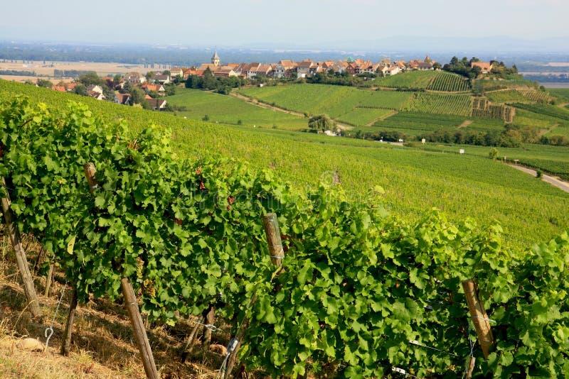 Horizontal d'Alsace photographie stock