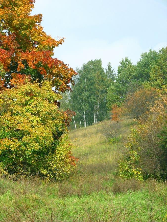 Horizontal d'automne image libre de droits