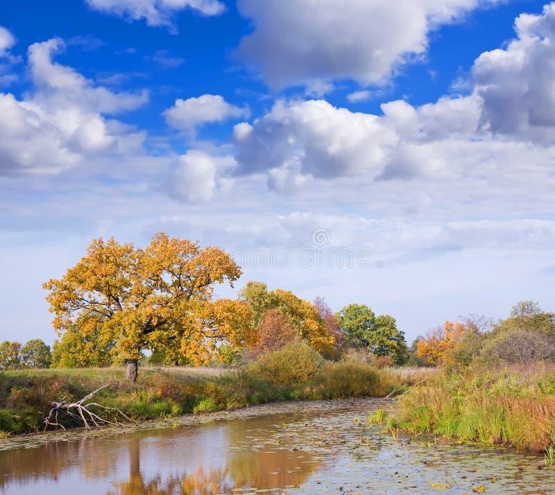 Horizontal d'automne avec le lac photographie stock libre de droits