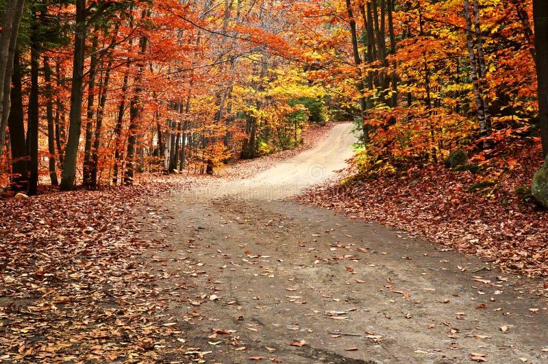 Horizontal d'automne avec un chemin photo stock