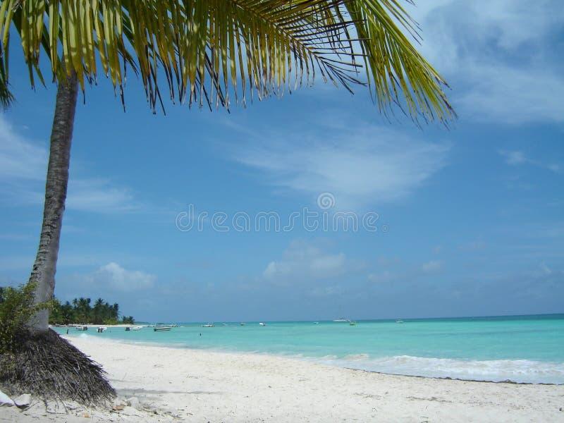 Horizontal d'Isla Saona images libres de droits