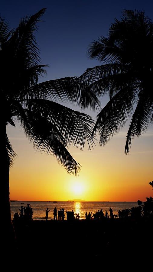 Horizontal de coucher du soleil Plage et ciel de coucher du soleil Les palmiers silhouettent sur le coucher du soleil beach photos libres de droits