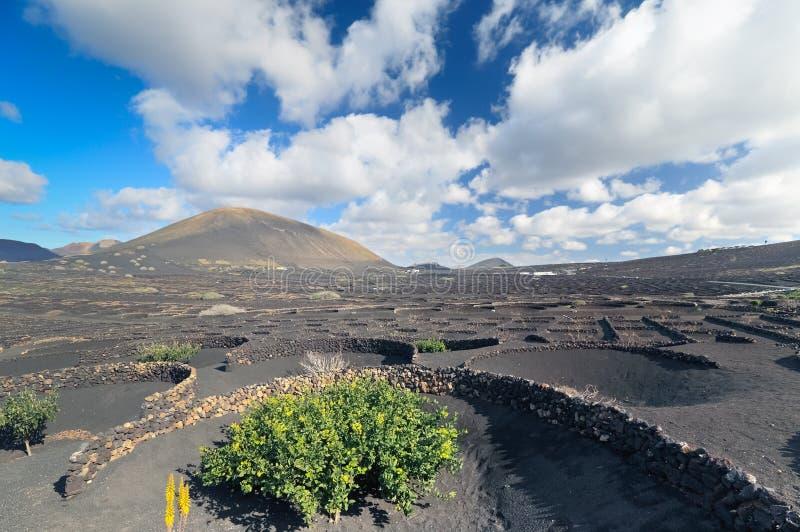 Horizontal de désert, île de Lanzarote (Espagne) photographie stock libre de droits