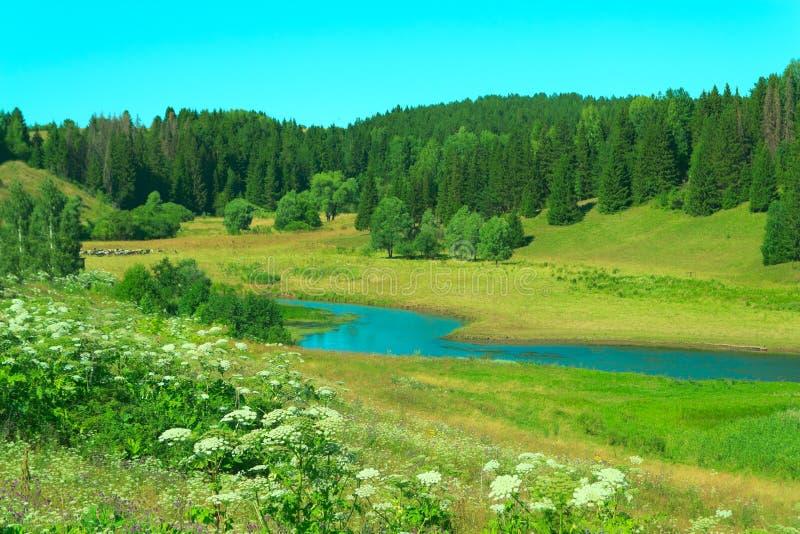 Horizontal de fleuve photos libres de droits
