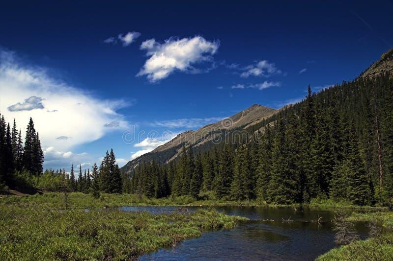 Horizontal de fleuve de montagne photo libre de droits