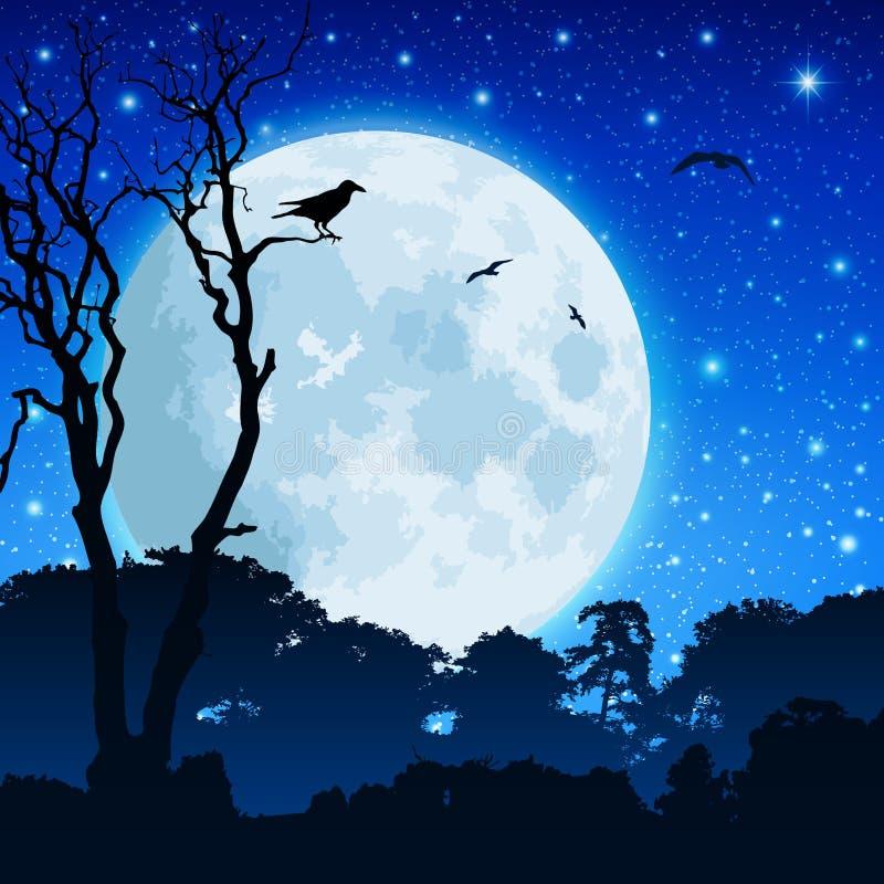 Horizontal de forêt avec la lune illustration de vecteur