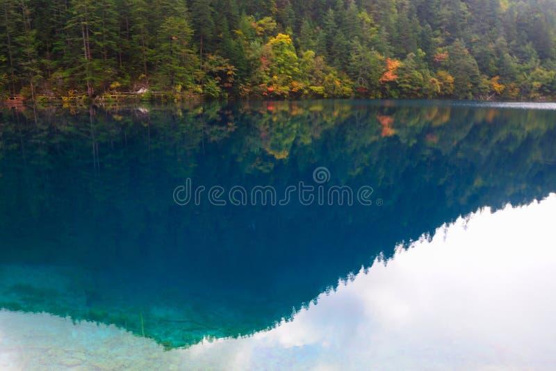 Horizontal de forêt et de lac de jiuzhaigou de la Chine photo stock