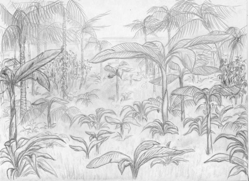 Horizontal De Jungle Photos stock