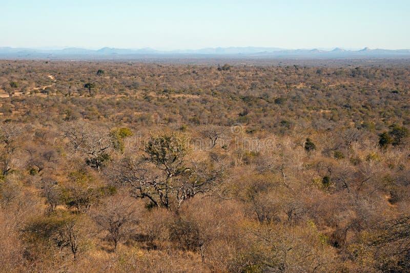 Horizontal de l'Afrique du Sud image libre de droits