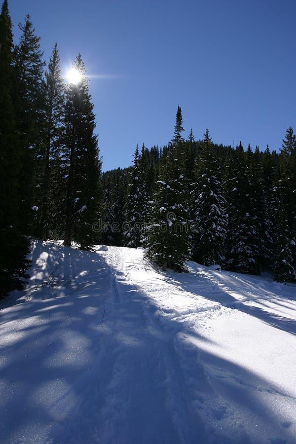 Horizontal de l'hiver. images stock