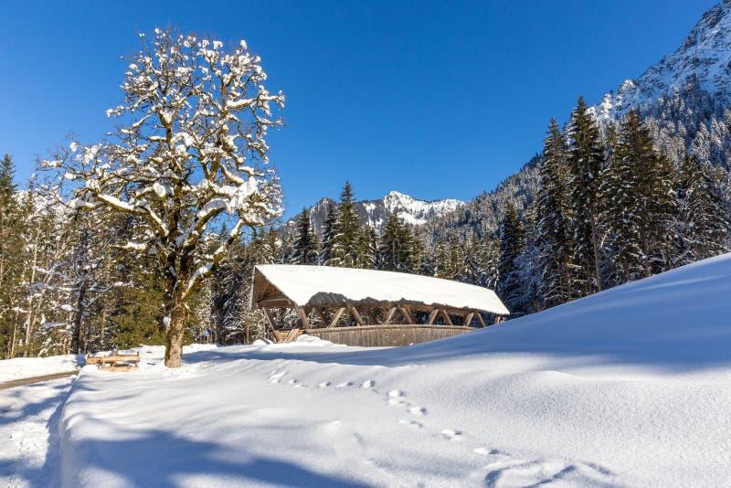 Horizontal de l'hiver photographie stock libre de droits