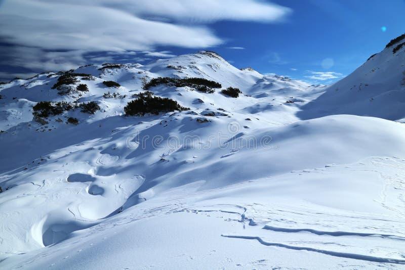 Horizontal de l'hiver image libre de droits