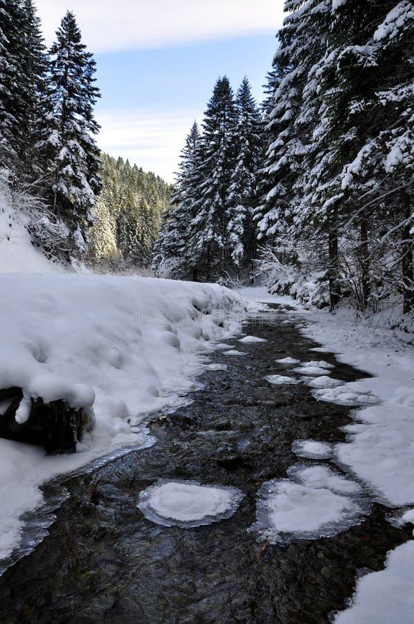 Horizontal de l'hiver avec la rivière photos libres de droits