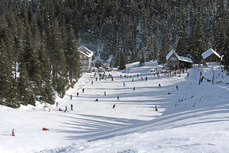 Horizontal de l'hiver de Carpathiens photographie stock