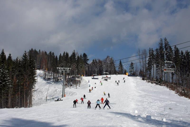 Horizontal de l'hiver de Carpathiens images stock