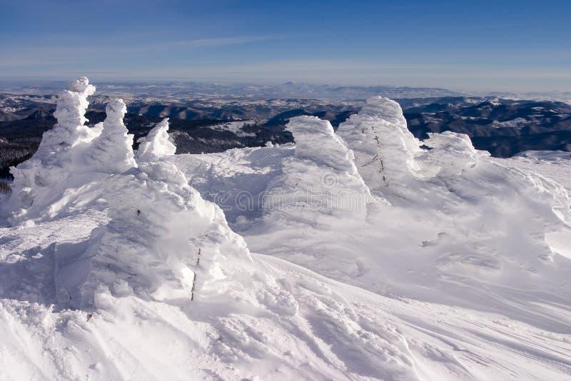 Horizontal de l'hiver de Milou photo stock