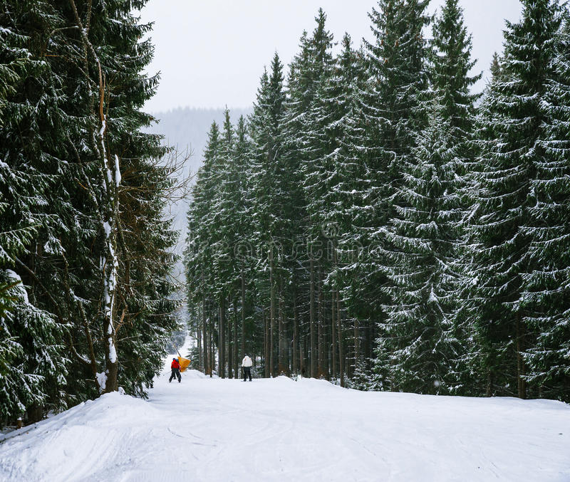 Horizontal de l'hiver de Noël photographie stock