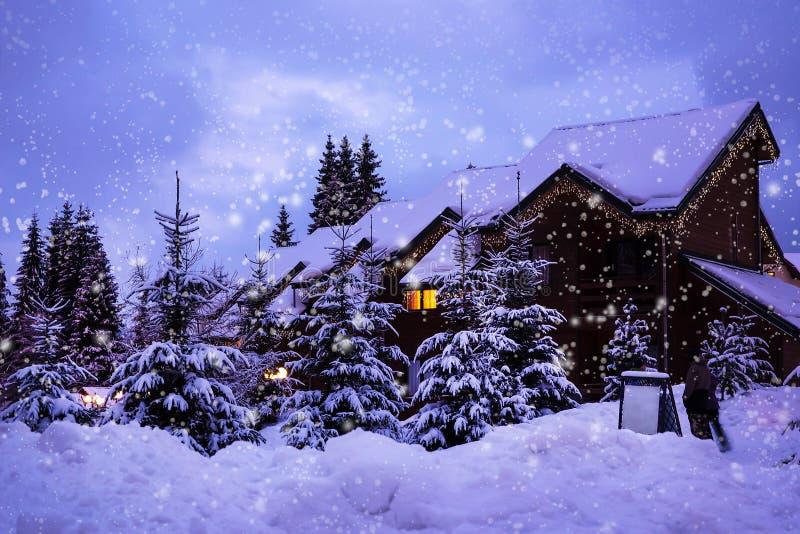 Horizontal de l'hiver de Noël image libre de droits