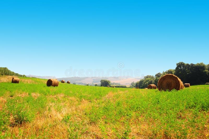 Horizontal de la Toscane photographie stock