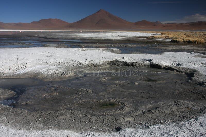 Horizontal de Laguna Colorada photos libres de droits