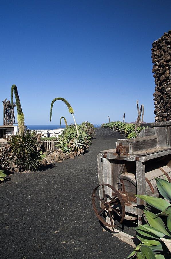 Horizontal de Lanzarote photo stock