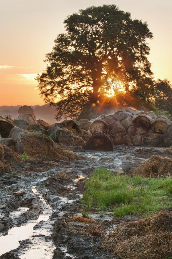 Horizontal de lever de soleil image libre de droits
