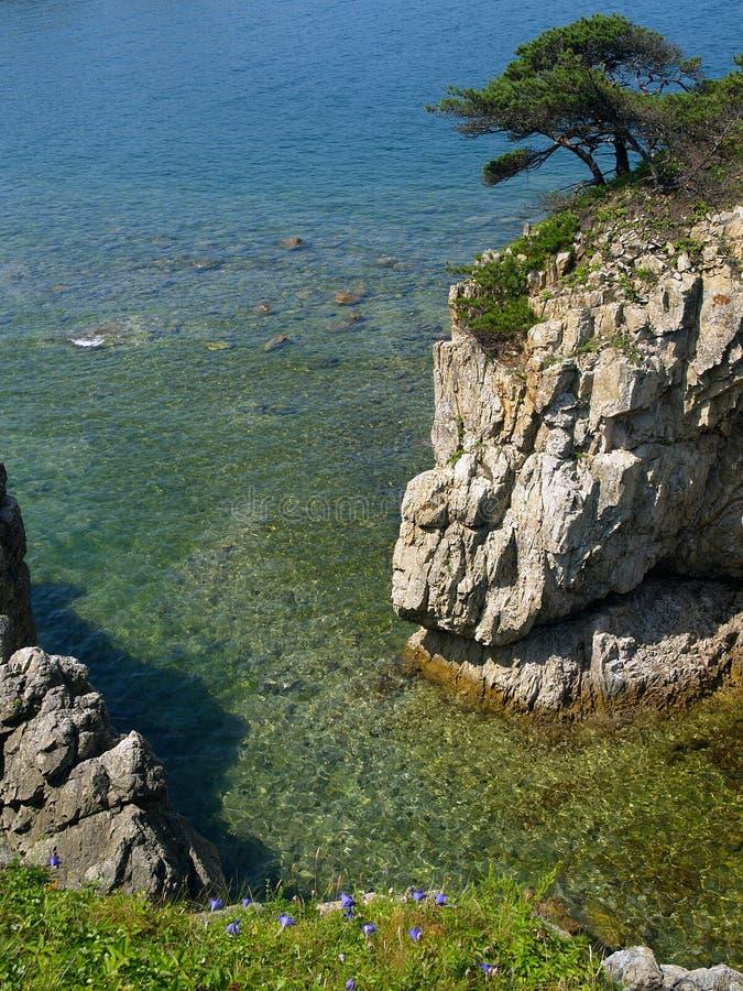 horizontal de mer avec la roche de pin   photographie stock libre de droits